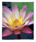 Pink Water Lily Fleece Blanket