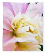 Pink White Dahlia Flower Soft Pastels Art Print Canvas Baslee Troutman Fleece Blanket