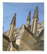 Pinnacles Fleece Blanket