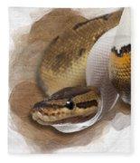 Pinstripe Pied Royal Python 01 Fleece Blanket