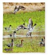 Pintail Take-off Fleece Blanket