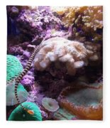 Pipe Fish And Sea Anemone  Fleece Blanket