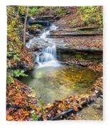 Pixley Falls State Park Lesser Falls Fleece Blanket