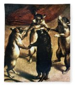 Plague: Dance Of The Rats Fleece Blanket