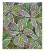 Plant Pattern Fleece Blanket