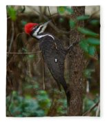 Plastic Wrapped Pileated Woodpecker Fleece Blanket