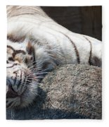 Playful Tiger Fleece Blanket