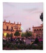Plaza De Armas, Guadalajara, Mexico Fleece Blanket