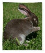 Please Carrots For Dinner Fleece Blanket