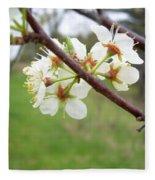 Plum Blossoms In Spring Fleece Blanket