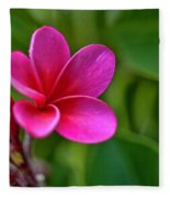 Plumeria - Royal Hawaiian Fleece Blanket
