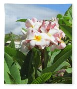 Plumeria In Pink Fleece Blanket
