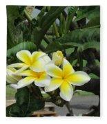 Plumeria In Yellow 2 Fleece Blanket