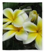 Plumeria In Yellow 3 Fleece Blanket