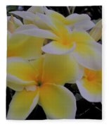 Plumeria In Yellow 4 Fleece Blanket