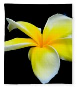 Plumeria In Yellow Fleece Blanket