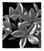 Plumeria Proper Evening Fleece Blanket