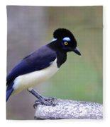 Plush Crested Jay Fleece Blanket