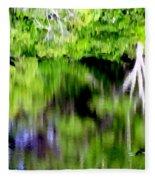 Plymouth Reflections #2 Fleece Blanket