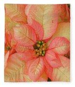Poinsettia Passion Fleece Blanket
