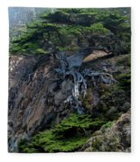 Point Lobos Veteran Cypress Tree Fleece Blanket