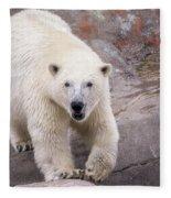Polar Bear Prowl  Fleece Blanket