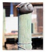 Pole Top Pelican Fleece Blanket