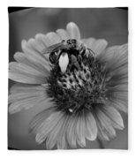Pollen Collector Bw Fleece Blanket