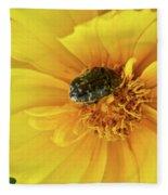 Pollen Feeding Beetle Fleece Blanket