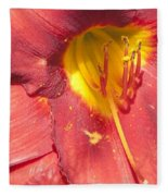 Pollen Fleece Blanket