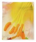 Pollinator's Heaven Fleece Blanket