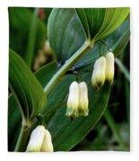 Polygonatum Odoratum Fleece Blanket