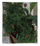 Pomegranate In The Pot Greece  Fleece Blanket