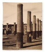 Pompeii, Excavation Fleece Blanket