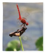Pond Ballerina Fleece Blanket