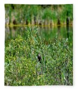 Pond On Cherry Creek Study 2 Fleece Blanket