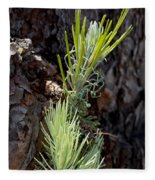 Ponderosa Pine 8 Fleece Blanket