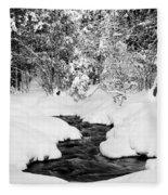 Pool Fleece Blanket
