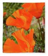 Poppies Antelope Valley Fleece Blanket