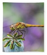 Poppy And The Dragonfly Fleece Blanket