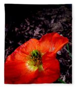 Poppy At Dusk Fleece Blanket