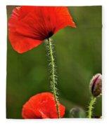 Poppy Image Fleece Blanket