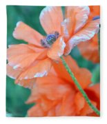 Poppy Passion Fleece Blanket