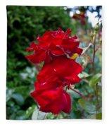 Portland Roses #6 Fleece Blanket