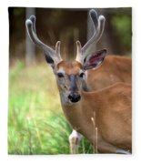 Portrait Of A Beautiful Buck  Fleece Blanket