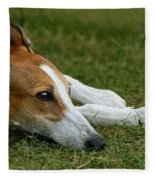 Portrait Of A Greyhound - Soulful Fleece Blanket