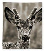 Portrait Of A Male Deer II Fleece Blanket