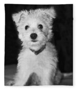 Portrait Of A Puppy In Black And White Fleece Blanket