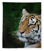 Portrait Of A Tiger Fleece Blanket