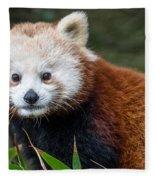 Portrait Of Cini The Red Panda Fleece Blanket